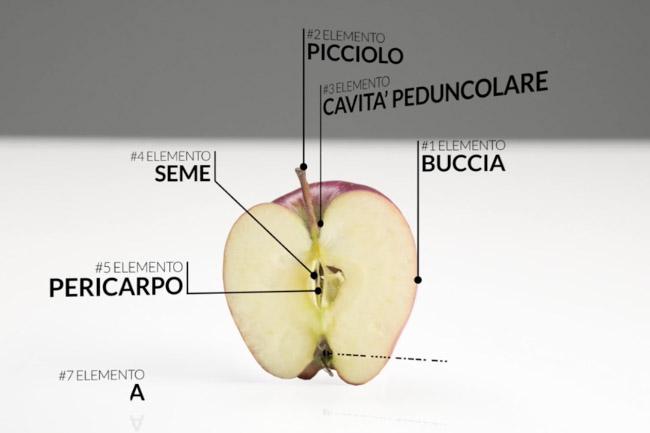 Visualworld produzione video Bergamo - Spot